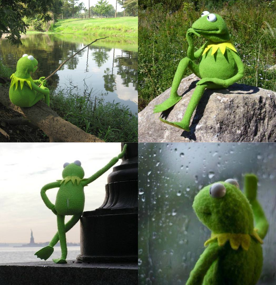 kermit reflecting on his music marketing campaign